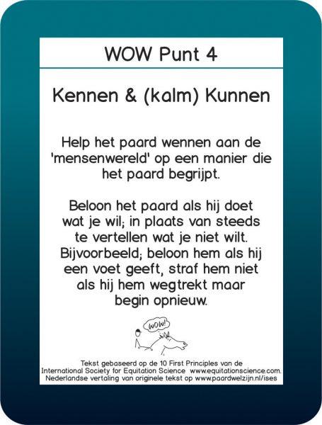 WOW 4